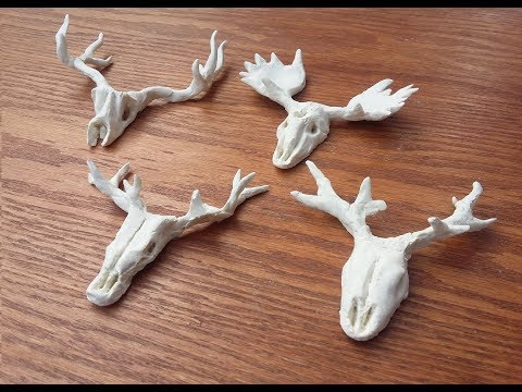 How to make a Animal Skull using Air Hardening Clay at Home.
