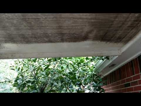 PowerHouse Pressure Washing - Patio Ceiling Mold Removal