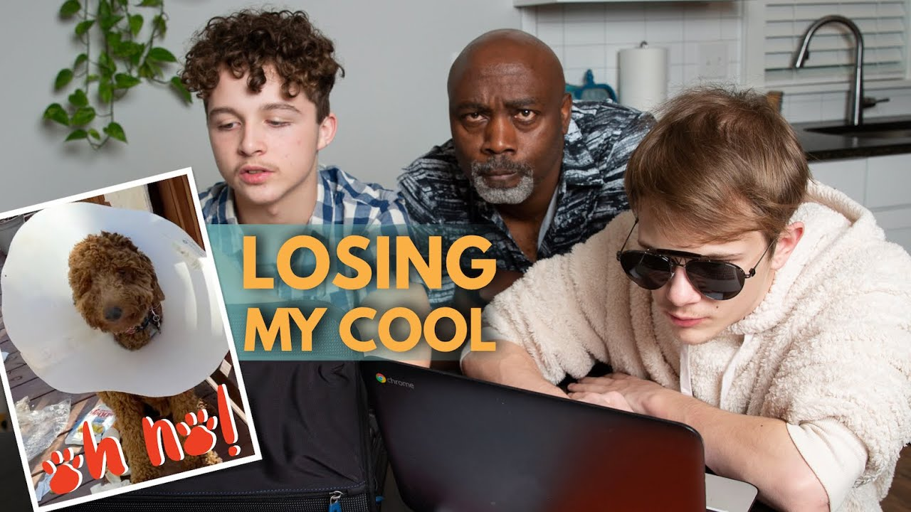 LOSING MY COOL OVER VIRTUAL SCHOOL   GUILTY DOG