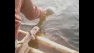 mancing cirata (radin)