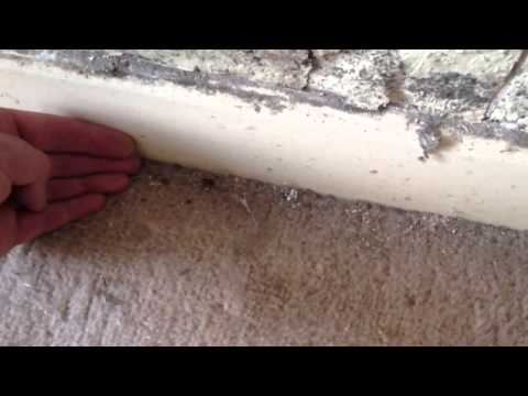 How To Remove Spiders From Your House?