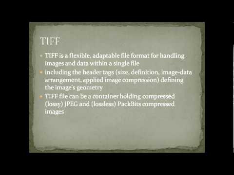 Video on TIFF file format