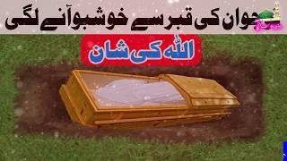 Allah Ki Qudrat ||Qabar se Khushboo aane ki haqeeqat || urdu islamic video || pak madina.