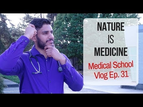 Nature is Medicine? Why Forest Bathing is Good For You | Canadian Medical Student