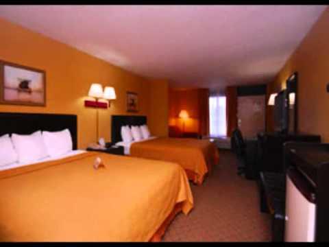 quality inn hotel orlando airport