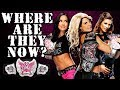 What Happened To Every WWE Divas Champion