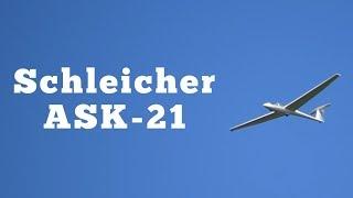 1987 Schleicher ASK21 Sailplane: Regular Car Reviews
