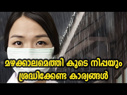 മഴക്കാലമെത്തി കൂടെ നിപ്പയും ശ്രെദ്ധിക്കേണ്ട കാര്യങ്ങൾ | Nipah Virus Kerala