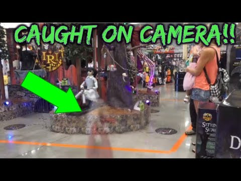 REAL Ghosts & Haunted Dolls Caught on Camera on Our Haunted Spirit Halloween Walk Through!
