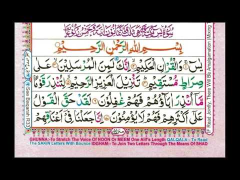 Learn Quran Reading Very Simple and Easy : Surah 36 Yasin / Yaseen / یس