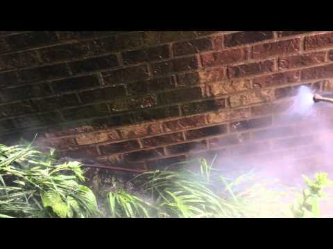 Mold Removal From Brick Chicago
