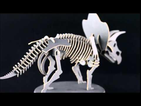 Triceratops Paper Board Model Kit
