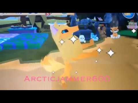 How to get adopted on animal jam play wild