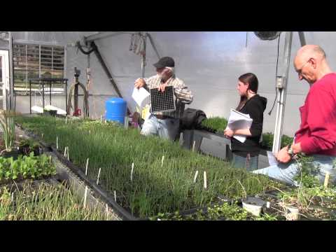 Seed Starting Part 1 How to Germinate Successfully