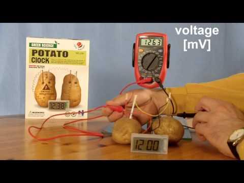 Potato Clock Experiment