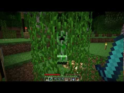 Minecraft Tips: Vines