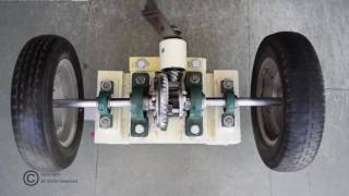 Limited Slip Differential/Spur Gear Differential working model