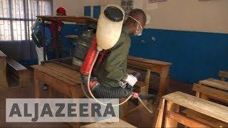 Madagascar plague: 30 killed as public panic over disease