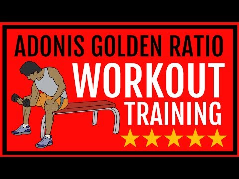 Adonis Golden Ratio Workout PDF | Adonis Golden Ratio Workout Program PDF