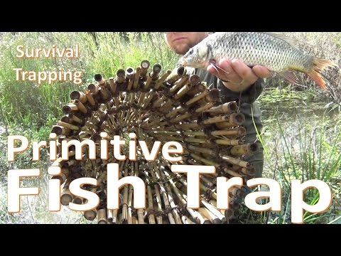 Primitive Survival Fish Trap -Build and Set-