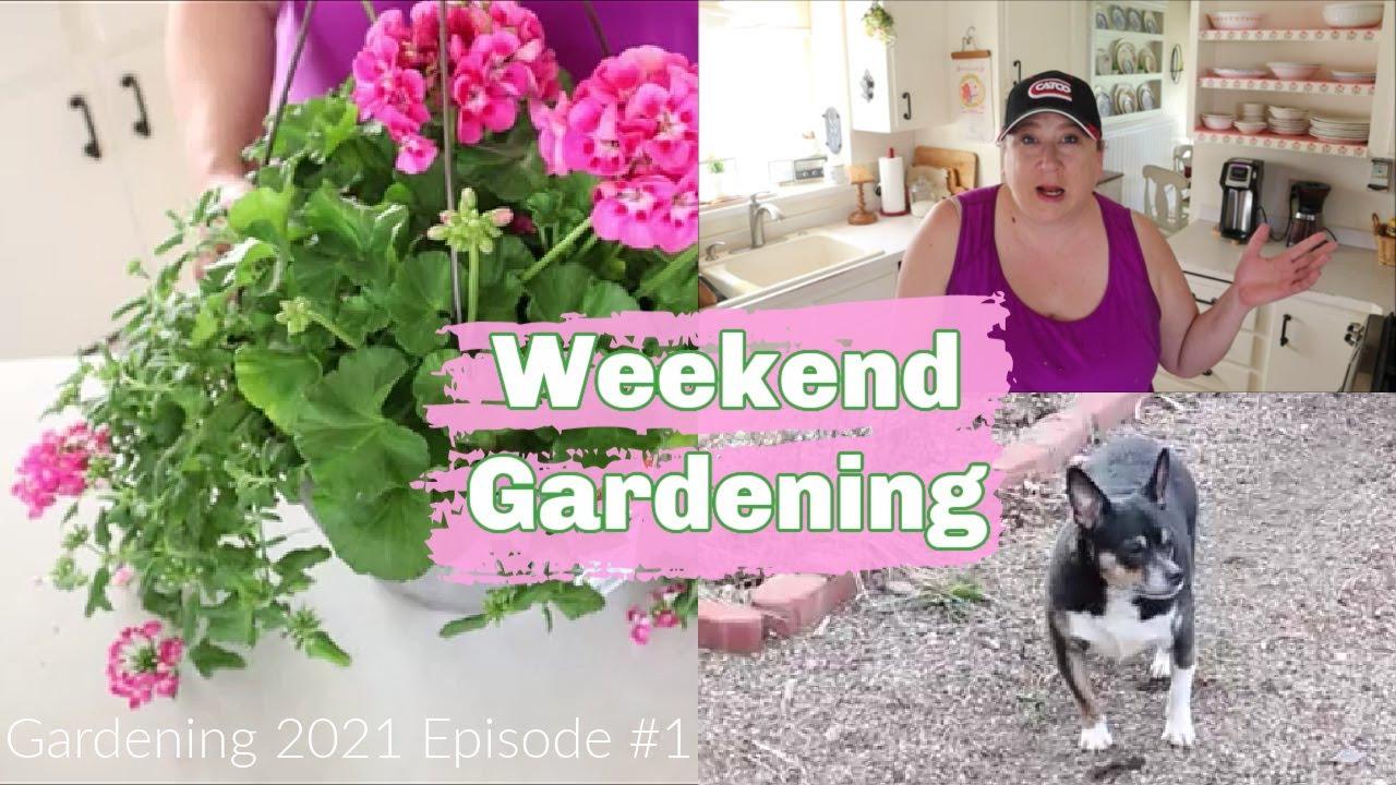 Weekend Gardening | Gardening 2021 Episode #1 | Early Spring Garden Cleanup