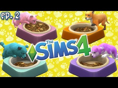 Rainbow Cuteness - The Sims 4: Raising YouTubers as PETS - Ep 2 (Cats & Dogs Expansion)