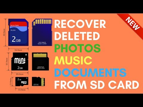 Recover Deleted Photos | Music | Documents from SD Card