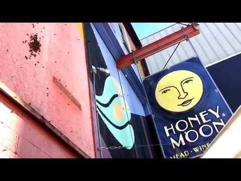 Colony of honey bees making home at the Honey Moon Mead and Cider Hall in Bellingham, WA