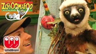 Zoboomafoo | Episode: Lets Teach Lemur More Animals! | Animals For Kids