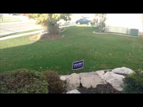 Watch! Electric Trap Donald Trump Sign! Hillary Clinton Supporter Gets Shocked Stealing Yard Sign
