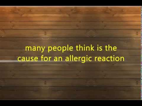 Why Some People Get Allergy and Others Don't!