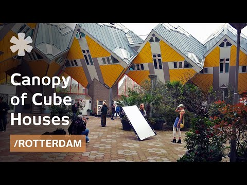 Cube Houses hang on pylons like a forest canopy in Rotterdam