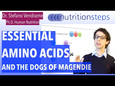 Essential Amino Acids, and the Dogs of Magendie