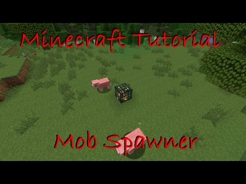 How To Change The Mob Type Of A Spawner In Minecraft 1.8+