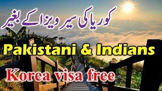 Pakistanis and Indians Visa Free entry to South Korea  Jeju Island..