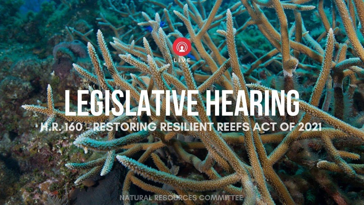 WOW Legislative Hearing - Restoring Resilient Reefs Act