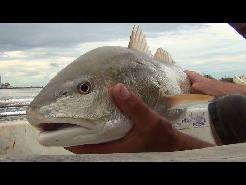 Calaveras Lake RedFish, Fishing The Beach