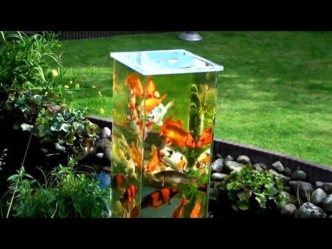 3 Above Water Fish Tanks