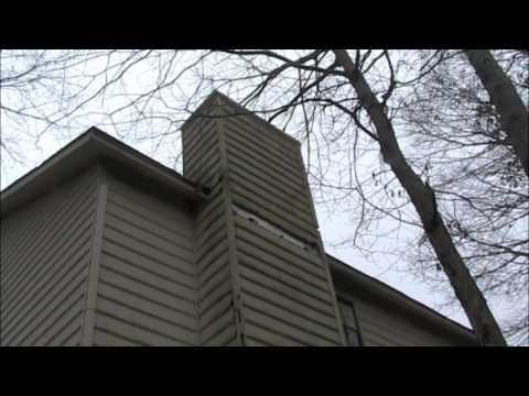 What's that attic noise part 2