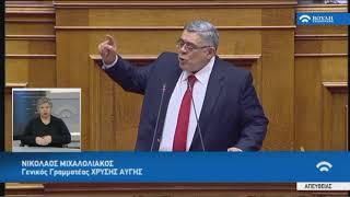 Ν.Μιχαλολιάκος(Γεν.Γρα.Χρυ.Αυγής)(Αναθεώρηση Συντάγματος)(13/02/2019)