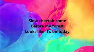 Red Hot Chili Peppers - Slow Cheetah Lyrics