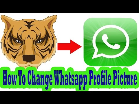 How To Change Whatsapp Profile Picture on Samsung Galaxy Phone