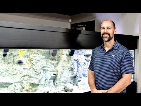 Gordon's 300-gallon CustomAquariums Cichlid Display