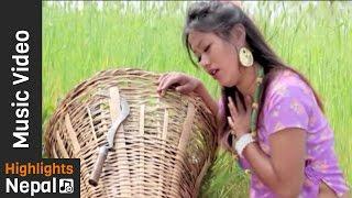 Kura Katnele - New Nepali Lok Dohori Song 2017/2073 Ft. Kumar, Kabita | Manasalu Digital