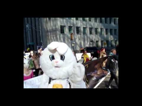 Toronto fur march Nov 12 2016