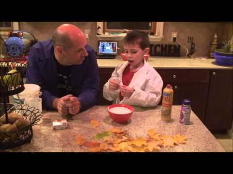Science With Daddy: Plaster Fossils