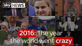 2016: The year the world went crazy
