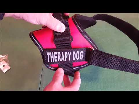 Doggie Stylz Therapy Dog Vest Review