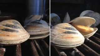 Grilled Clams Recipe Little Neck Clams How To Bbq Tricks