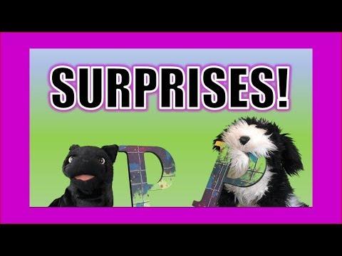 New Surprises!  George the Self Esteem Cat